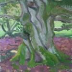 Small Dumfries Tree, oil on board, 23x20